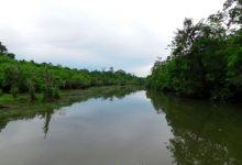 Wisata di Resort Way Kanan