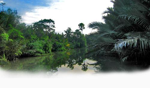 Sejarah Taman Nasional Way Kambas